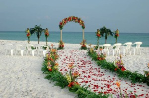 Playa5