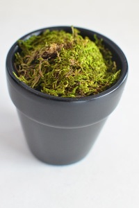 chalkboard-flowerpot5