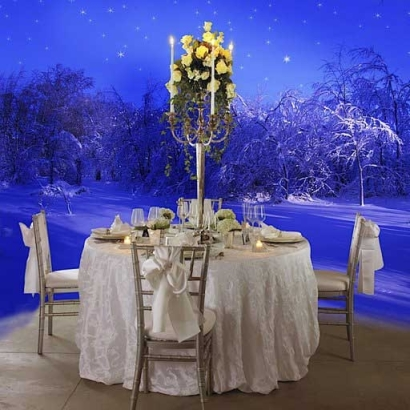 WinterWedding_CEF6433EF9350