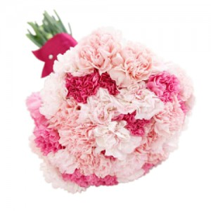 claveles-envio-a-domicilio-para-aniversarios-enamorados-primavera-dia-de-la-madre-mujer