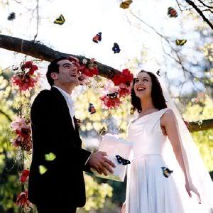 mariposas-bodas_1
