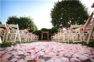 pink_flowers_162_10_m