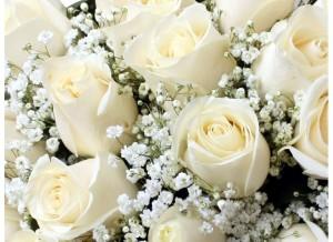 ramo-de-12-rosas-blancas