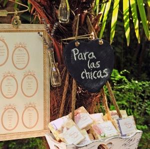 paralaschicas-board
