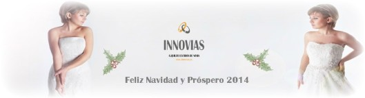 cropped-banner_navidad_innovias_2013_ok.jpg