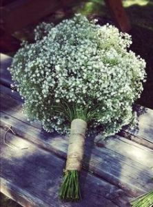 ramos_Paniculata