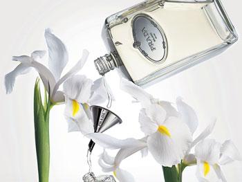 perfumeprada