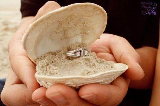 concha para anillo compromiso