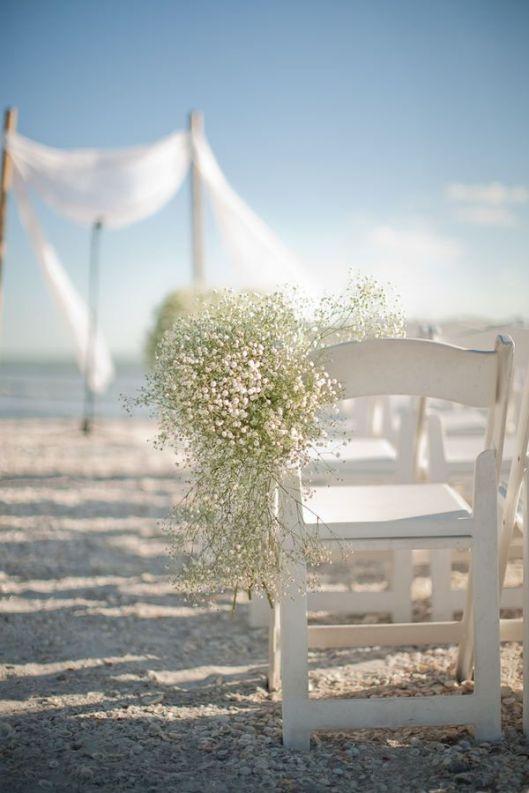 paniculata sillas boda