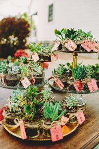 Pequeñas plantas de recuerdo para los invitados. Vía Pinterest.