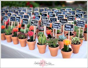 Cactus personalizados para los invitados. Vía Pinterest.
