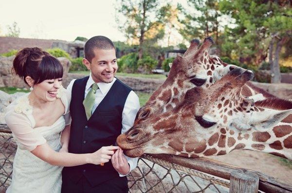Foto-Zoo
