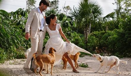 TTD-Dogs-Tierra-de-Animales