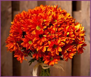 bouquet_margaritas_naranja