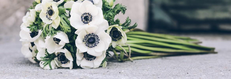 ramo-anemonas