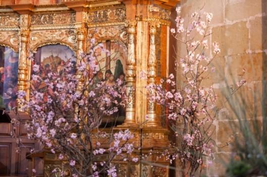 altar-con-almendros