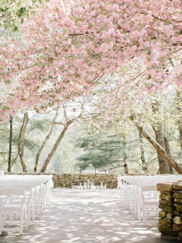 boda-almendros-ceremonia