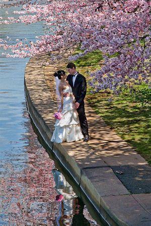 boda-almendros