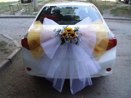 coche10