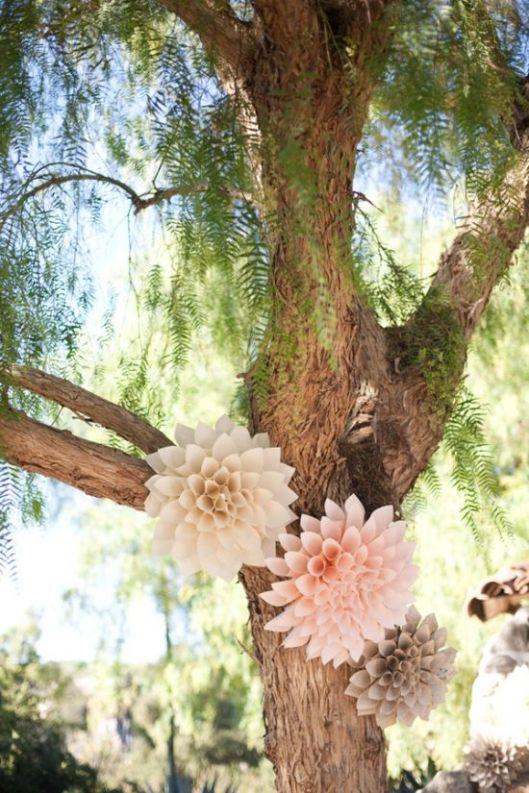 flores-con-conos